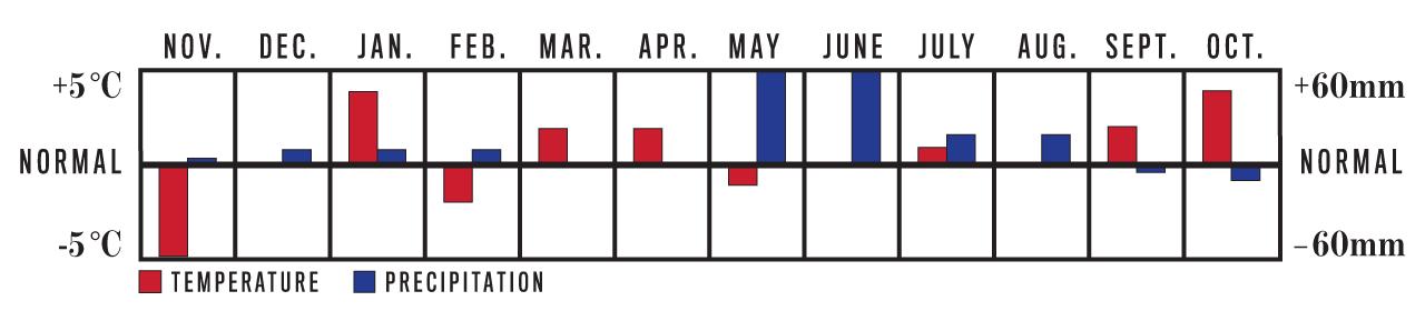 Temperature and Precipitation Chart, November 2020 to October 2021 for Yukon Region